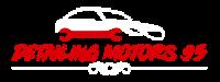 Detailling Motors 95